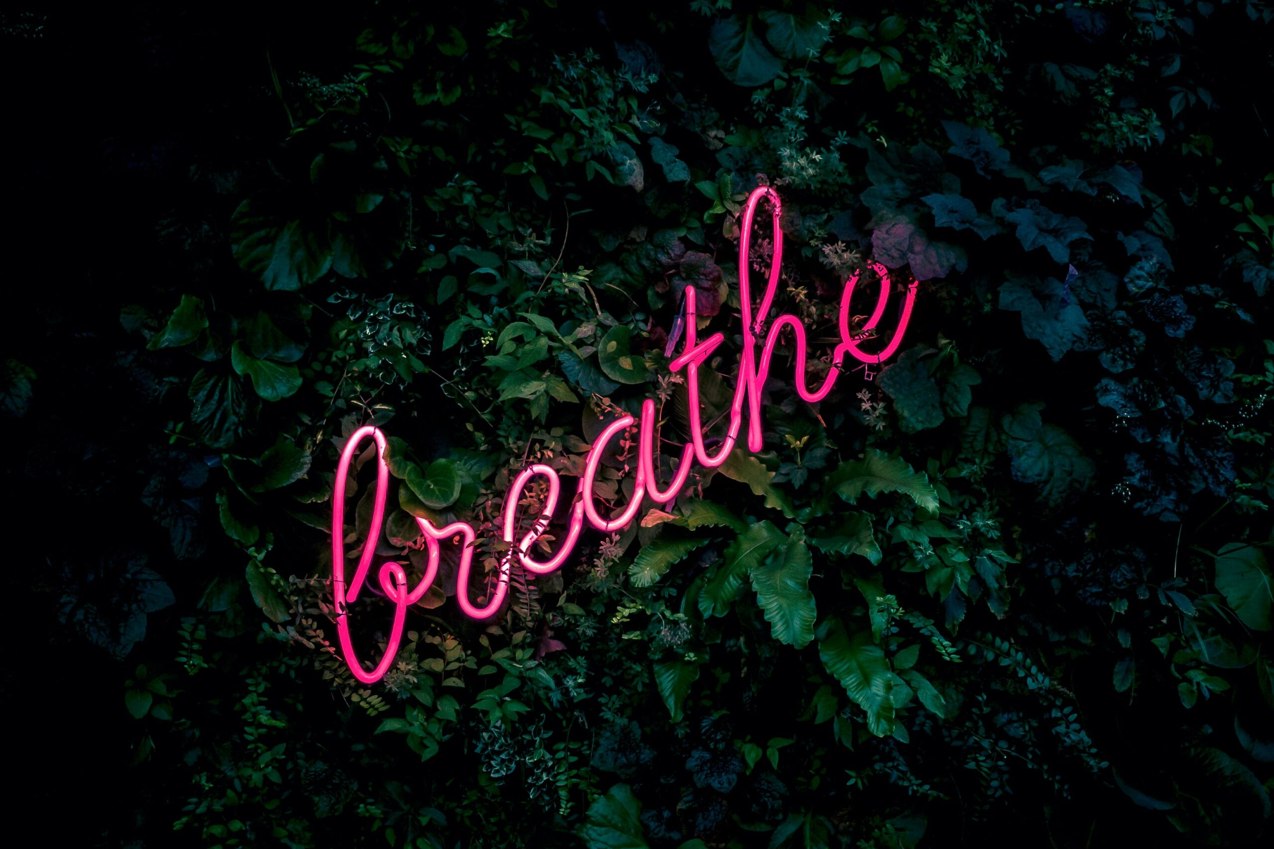 What is your breathing rate? (and why it's important!)